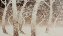 H. BURRET, Les bourrasques de neige, huile sur sur toile, 130x162cm, 2010