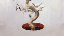 Sépànd DANESH, Bonzai semaine 5, 55x46cm, 2012