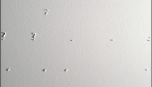 Saïb KAMEL,  Je peinture 100x30cm, 2000