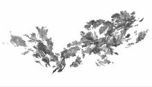 TROTIGNON Claire, Triple matin, 113x225cm. sérigraphie Vélin d'Arches n° 8/12, 2013
