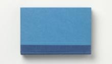WÜTHRICH Peter (CH) Literary Horizon, livre cadre bois, 55x60cm, 2010