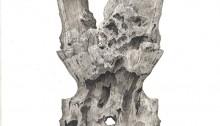 PARK Ido, Human Pattern 6, 22x22cm, dessin peinture huile/gesso, 2013
