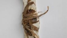 I. D'ASSIGNIES, n°186, feuilles de poireaux cire lame de plancher peinture, 70x19x17cm, 2006