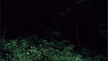 E. HURTADO, série La Ronde de nuit, argentique couleur/alu. 80x120cm, 5 ex., 2006