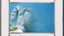 C. GENIN, Nunc Stans n°6, Photo sur verre 24x36cm. En vitrail 38,5x50cm. 2017