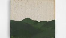 Peter WÜTHRICH (CH)  Mr. Bloom's Landschaften 2017, Acryl auf (Leinen) Buch, 52x52cm, gerahmt