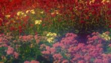 de SOUSA Portrait de jardin, n°3 H60x85cm 2010