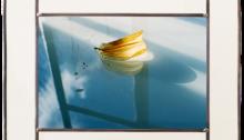 C.-GENIN-Nunc-Stans-n°4- Photo-sur-verre-24x36cm-montée-en-vitrail-385x50cm. 2017