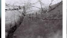 H- BLANC GENIN ss titre, triptyque 3 x 1 lé 193cm avec image 28x40cm transfert sur Wenzhou, 30g. 2021